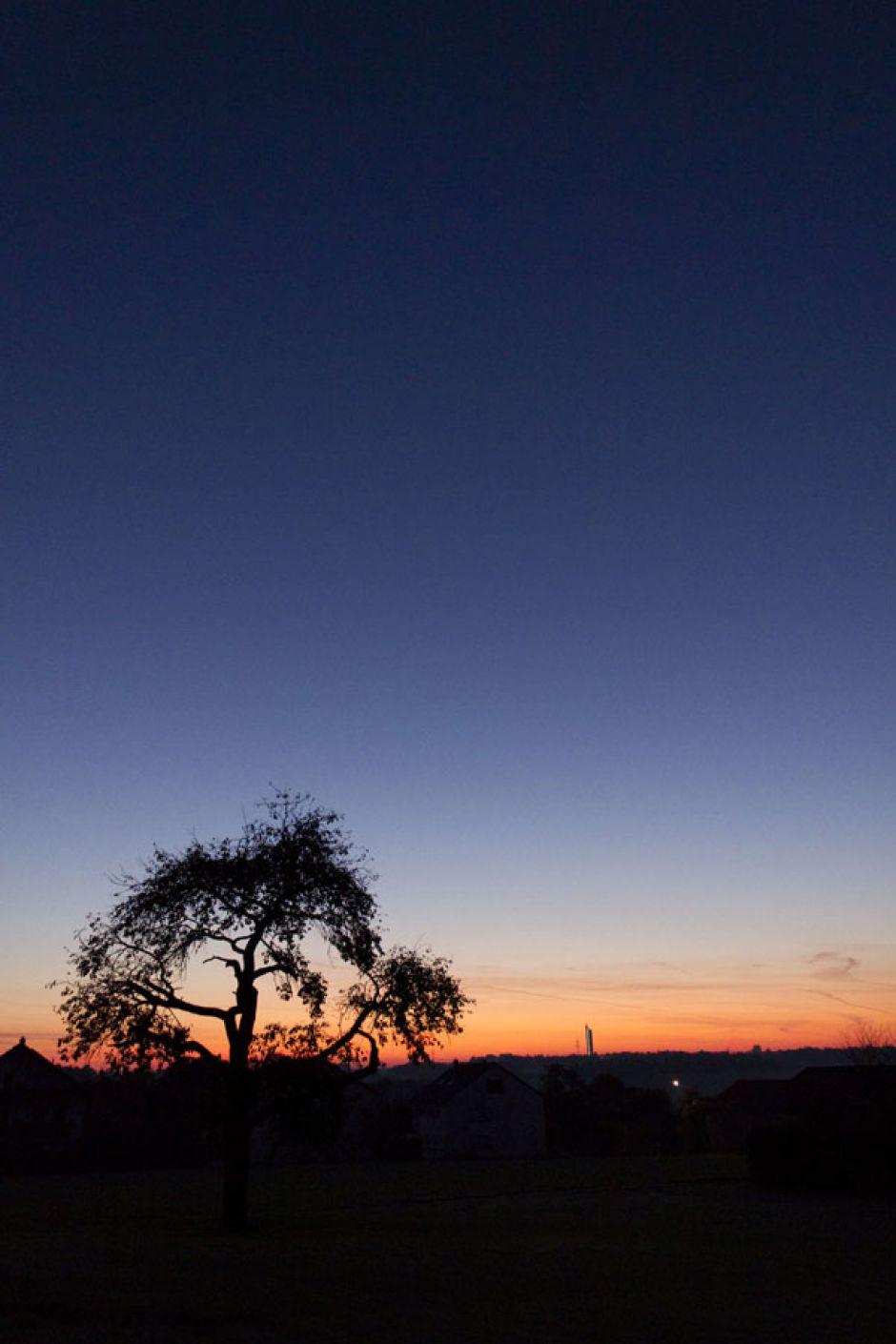 Erster Frost | Herbstmorgen